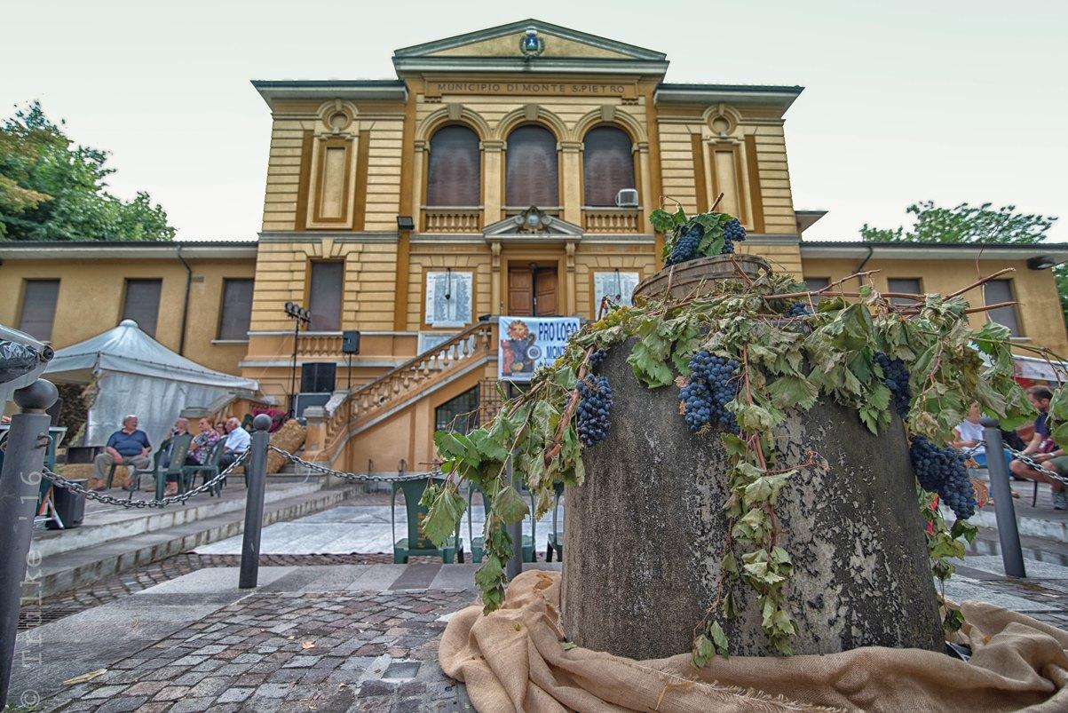 49° Sagra del Vino dei Colli Bolognesi 1