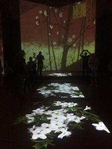 Van Gogh Alive: il grande successo a Bologna continua sino al 31 ottobre 2