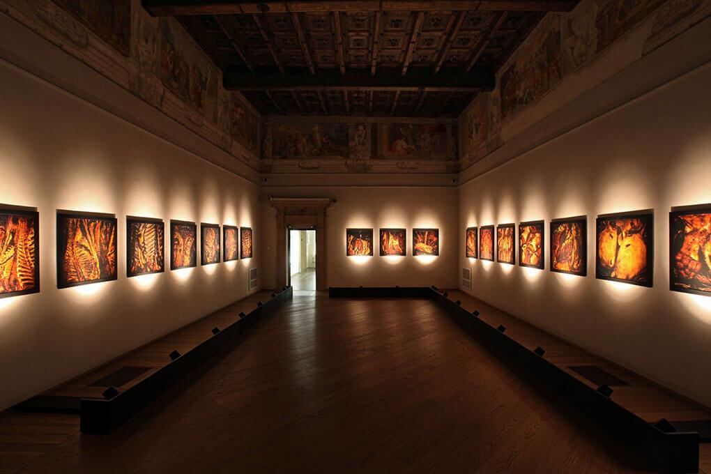 Palazzo Fava - Palazzo delle Esposizioni