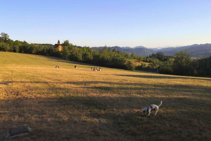 Bosco di Ca'Shin a Bologna, Parco Cavaioni