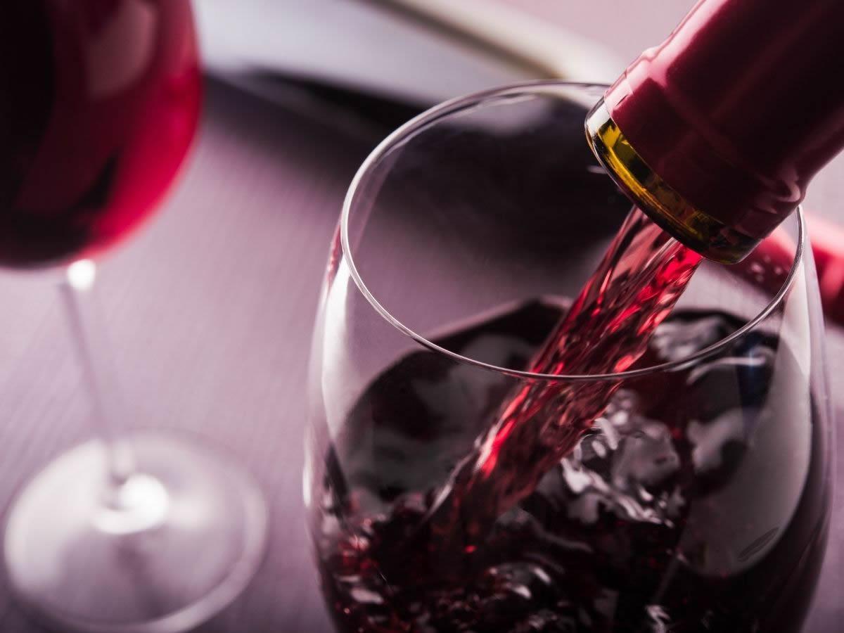 Degustazione Go Wine a Bologna