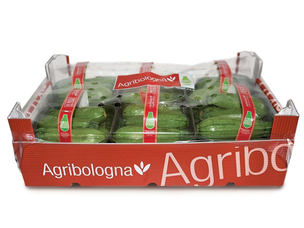 Zucchina chiara di Bologna: arriva il marchio collettivo
