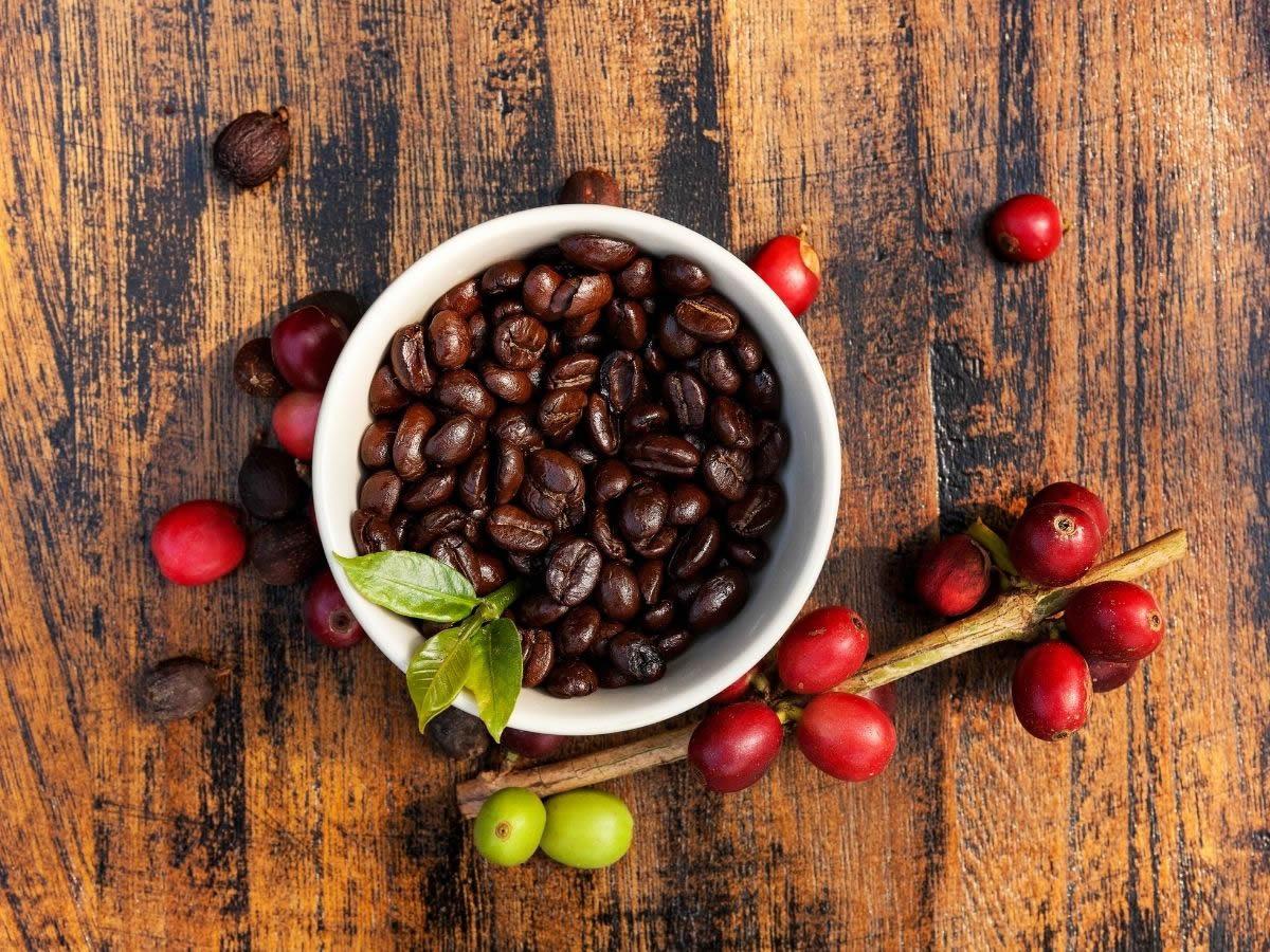 La Miscela N. 1 di Caffè Terzi diventa ecosostenibile